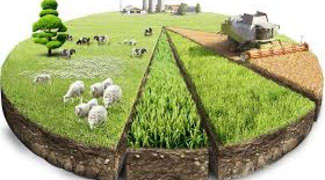 Ekim Ayı Tarım Ürünleri Üretici Fiyat Endeksi Açıklandı